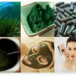 Kapsul Spirulina Herbal Insani Asli | Herbal Antioksidan | Masker Spirulina