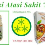 Kapsul Datipes Herbal Insani | Herbal Sakit Tipes