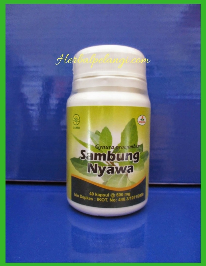 Jual Kapsul Sambung Nyawa Herbal Insani